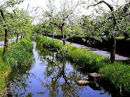 Tuinenpark De Driehoek